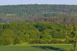 Parc National entre Champagne et Bourgogne